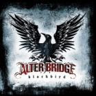 Alter Bridge - Blackbird