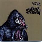 Charlie Hunter - Baboon Strength