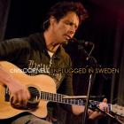 Chris Cornell - Unplugged in Sweden