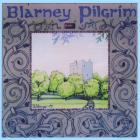 Idlewild - Blarney Pilgrim