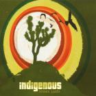 Indigenous - Broken Lands