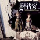 Indigo Girls - Shaming Of The Sun