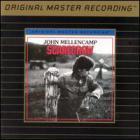 John Cougar Mellencamp - Scarecrow(1)