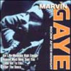 Marvin Gaye - Rockin After Midnight