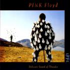 Pink Floyd - Delicate Sound Of Thunder CD1