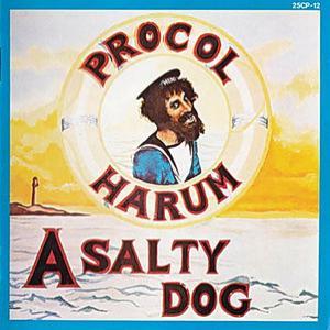 A Salty Dog (Vinyl)