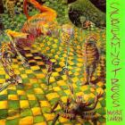 Screaming Trees - Invisible Lantern