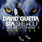 David Guetta - She Wolf (Falling To Pieces) (Feat. Sia) (CDS)