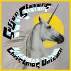 Sufjan Stevens - Silver & Gold Vol. 10 - Christmas Unicorn CD4