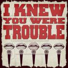 Walk Off The Earth - I Knew You Were Trouble (CDS)