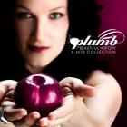 Plumb - Beautiful History: A Hits Collection (Bonus Remix Version)