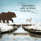 Somewhere Only We Know (CDS)
