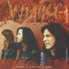 Down Incognito (CDS)