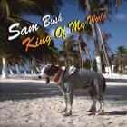 Sam Bush - King Of My World