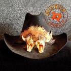 Johnny Winter - Remembrance Volume 1 CD1