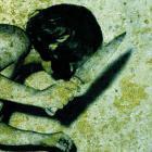 Collected Atrocities 2005-2008 CD1