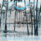 Four Tet - Jupiters / Lion (Remixes) (EP)