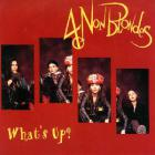 4 Non Blondes - What's Up? (MCD)