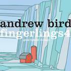 Andrew Bird - Fingerlings 4: Gezelligheid Chicago
