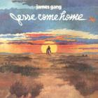 James Gang - Jesse Come Home (Vinyl)