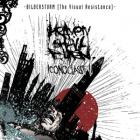 Heaven Shall Burn - Decade Of Expression