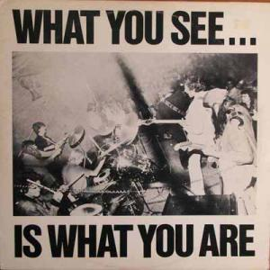 What You See Is Whatyou Are (Vinyl)