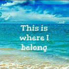 Ray Davies - This Is Where I Belong