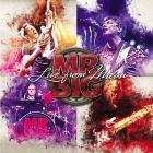 MR. Big - Live From Milan