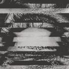 A Place to Bury Strangers - Re-Pinned