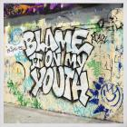 Blink-182 - Blame It On My Youth (CDS)