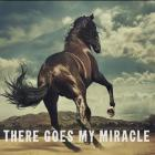 There Goes My Miracle (CDS)