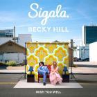 Sigala - Wish You Well (CDS)