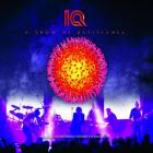 IQ - A Show Of Resistance Live @t The Colos-Saal Aschaffenburg