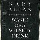 Gary Allan - Waste Of A Whiskey Drink (CDS)