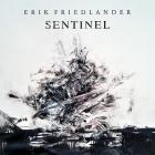 Erik Friedlander - Sentinel